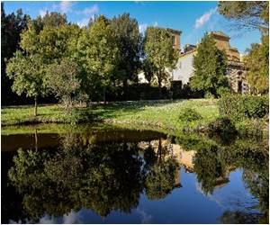 Villa That Held Author of Pinocchio's Imagination Goes on Sale in Italy