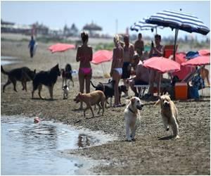 Italy's Dogs Enjoy Life on the Beaches