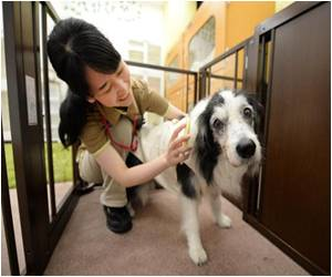 Japan Unveils Nursing Home for Aging Canines