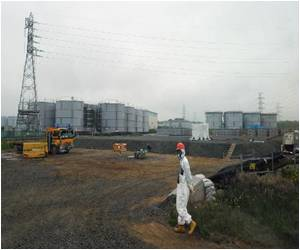 Fukushima Radiation Has Not Affected Reproductive Health of Bulls in Evacuated Area
