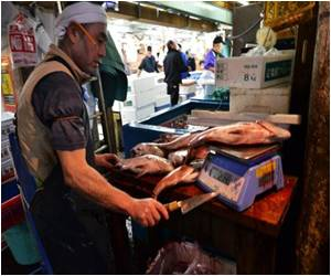 World's Biggest Fish Market in Japan Relocating to a Modern Facility