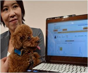 Japanese Firm Develops New Device to Monitor Your Dog's Health