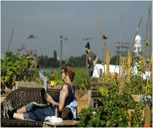 Berlin Turns Green With Urban Gardens on Rooftops, Parks and Airfields