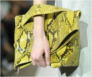 Accessories Lead the Way Even as Growth of Luxury Market Slows