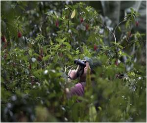 Peru to Host Bird Watching Competition