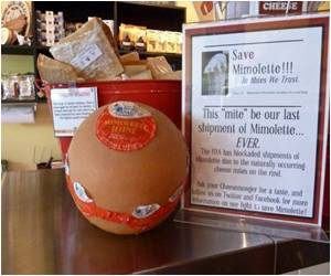 US Cheese Lovers Struggle to Save 'Mite-ridden' Mimolette