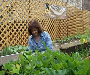 In The US, Gardens Help Refugees Take Root