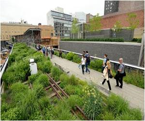 New York's High Line Celebrates Its Fifth Birthday