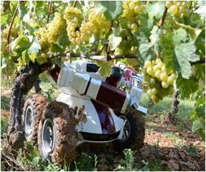 In France's Burgundy Wall-Ye Wine Robot Takes Bow