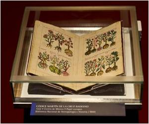 Codex Exhibit In Mexico Rethinks Moctezuma's Death