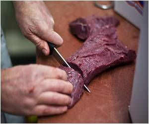 EU Plans to Carry Out a Second Round of Tests for Horsemeat in Food