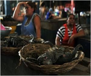 Nicaraguan Iguana Soup Gaining in Popularity