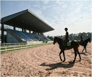 Brazilian Authorities Probe Contagious Horse Disease Near Olympic Site
