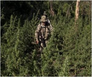 In Paraguay-Brazil No-man's-land Drugs Spur Violence