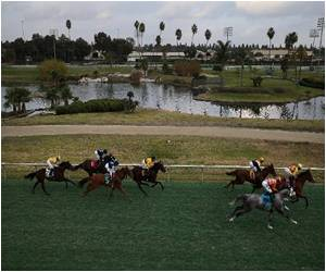 Hollywood Park Closes After 75 Years