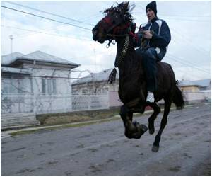 Horses Baptized by Romanians on Orthodox Holiday