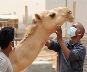 MERS Coronavirus Detected in the Air of a Saudi Arabian Camel Barn