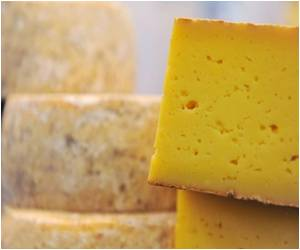 Prehistoric Man Made Cheese: Study