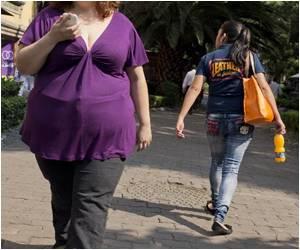 Key 'Fat Gene' Discovered