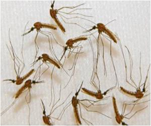 Monthly Treatment Cuts Malaria Risk
