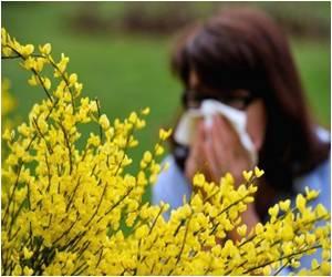 Faulty Genes Link to Allergies Identified