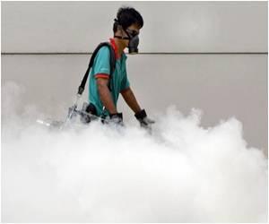 Singapore may be Hit With Worst Dengue Epidemic
