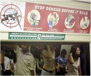 Singapore Dengue Epidemic Worsens