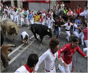 23 in Hospital After Spain's Bull Festival