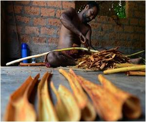 Trademarking Cinnamon Spice Success is Sri Lanka's Next Agenda