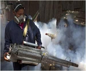 Sri Lanka Looks to the Army in Battle Against Dengue Fever