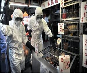 For 'False' Bird Flu Rumors China Detains 12