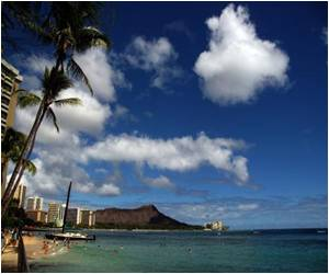 Hawaii Lawmakers Latest to Vote for Gay Marriage