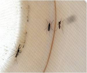 West Nile Virus More Prevalent in Orchards And Vineyards