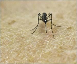 19 Cases of Zika Virus Reported in Puerto Rico: Health Secretary