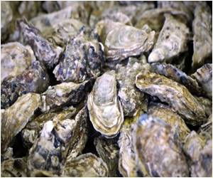 US FDA Warns Against Using Seafood From South Korea