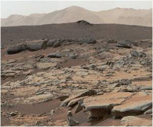Has an Alien Bone Been Spotted on Mars?
