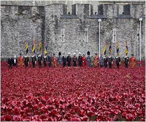 Ceramic Poppies Memorial With Names of Fallen Soldiers of WWI