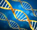 जेनेटिक्स (आनुवंशिक विज्ञान)