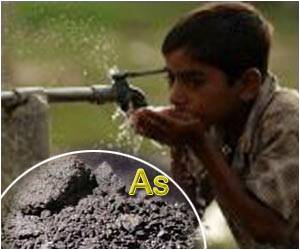 Symposium on Arsenic Contamination in Food and Water