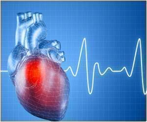 Research: Oxygen Reduces the Heart's Ability to Regenerate