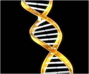 Gene Causing Rare Disease In Babies, Keyed
