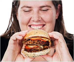 Fatty Junk Food Injures Brain Cells, Ups Obesity Risk