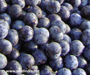 Acai Berries Extend Fruit Flies' Lifespan: Study
