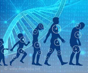 Deep Aging Clocks: Fresh Insights