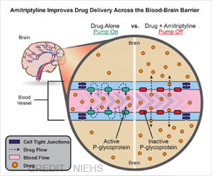 Amitriptyline Drug : Antidepressant May Enhance Drug Delivery to the Brain