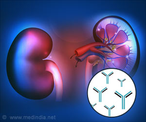 Lab Kidney Reveals Secrets of Polycystic Kidney Disease
