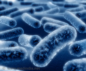 Bacteria are Hard-Wired for Survival, Says Study