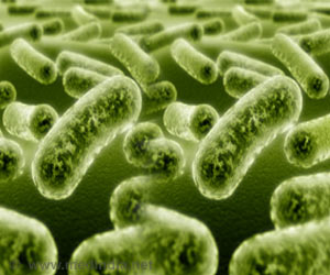 How Bacteria Propagate Antibiotic Resistance Deciphered at Molecular Level