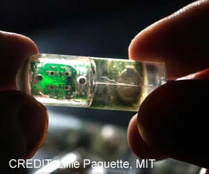 Bacteria-on-a-chip can Detect Gastrointestinal Diseases