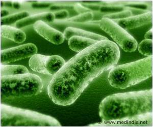 Motion Patterns of Bacteria Studied